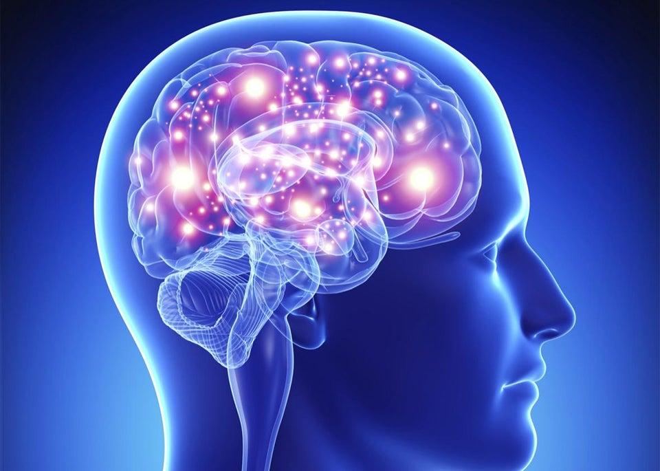 Brain diagram illustration